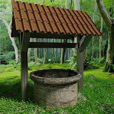 I Just Bought A House With A Well.