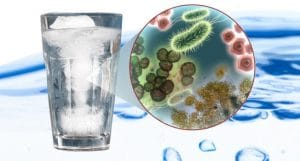 Meet the Contaminants: Pathogens & Viruses